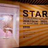 草間彌生、村上隆、奈良美智ら現代美術のスターが集結!『STARS展』開幕レポ