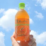伊藤園の生オレンジティーが刷新! さっそく試飲してみた