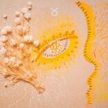 【今週の運勢/おうし座】「満たされたい、もっと。」ミモット星占い(8/10-8/16)