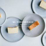 メルマガ会員だけ!「Mr.CHEESECAKE」が火曜日にも買えちゃうキャンペーン