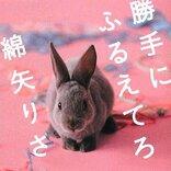 映画「勝手にふるえてろ」は松岡茉優の魅力が爆発!面白くて深い
