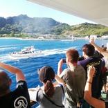 伊豆諸島航路・航空路利用者向けに感染リスクを通知するサービス 8月12日から導入