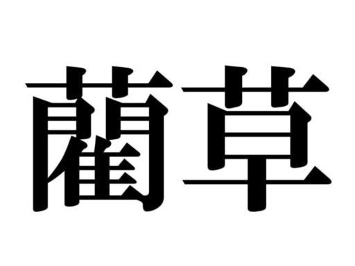 読めない漢字「藺草」