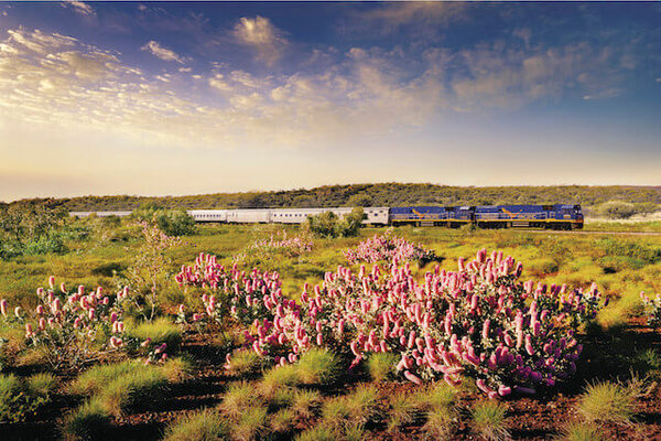 The Indian Pacific 外観2