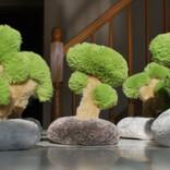独特の和の趣…… 盆栽のぬいぐるみが可愛すぎると話題に