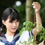 原爆で命を落とした19歳の女性 『Akiko's Piano ~被爆したピアノが奏でる和音(おと)~』今夜放送