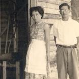 「近大マグロの、父と母。」-第3回 養殖の父&白浜の母-