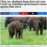 「象の糞は新型コロナウイルスを治癒しない」政府が異例の警告(ナミビア)