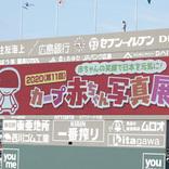 『カープ赤ちゃん写真展』を10月まで毎試合開催! マツダスタジアムの大画面に注目