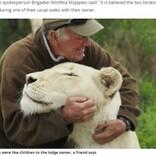 自然保護活動家、5年間育ててきた白ライオンに襲われ死亡(南ア)<動画あり>