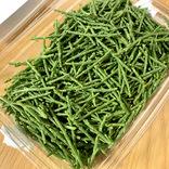 【コストコの達人】激レア野菜「シーアスパラガス(サリコルニア)」はこうやって食べよう