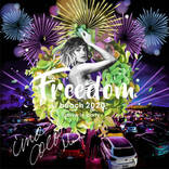 MINMI主催の野外フェス『FREEDOM beach 2020drive in party』の出演者が決定