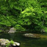 【日本の美味探訪】心に残る青森県のご当地グルメ3選