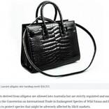 フランス旅行で200万円超のワニ革バッグを購入した女性、オーストラリアに帰国も税関が押収
