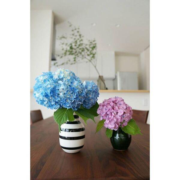 東のダイニングにはブルーお花