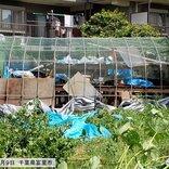 「令和元年 房総半島台風」から1年 まだ続く台風シーズン 命を守るには