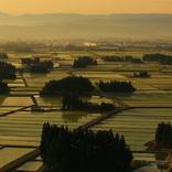 【日本の美味探訪】心に残る岩手県のご当地グルメ3選