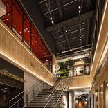 原宿の小径ではしごを楽しむ!「JINGUMAE COMICHI」全18店舗を現地ルポ