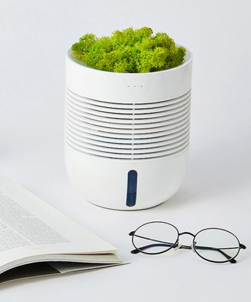 [KONVINI] 【HEALINGPOT】ヒーリングポット 空気洗浄 加湿器