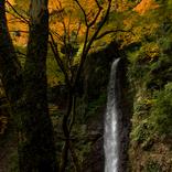【2020年開運】岐阜県のパワースポット3選!若返りの水、厄払いと病気平癒、7色に変わる滝壺