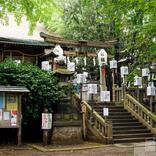 【東京都】「諏方神社」と古民家カフェを巡り、下町・谷中散歩を楽しむ
