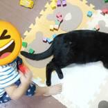1歳児の目の前に寝ころんだ黒猫 少し経つと、こんなことに…!