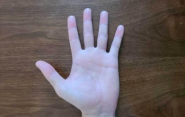 手相を見るのは右手と左手どっち? 意味や見方はどう変わる?