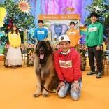 中居正広、『どうぶつな会』で大型犬と触れ合う「本当に大丈夫なの!?」
