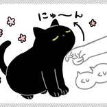 猫をかいてると… 愛猫の行動に「うちもやる!」と共感の嵐