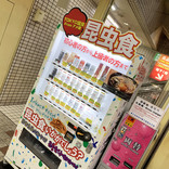 【閲覧注意】上野アメ横の昆虫食自販機限定コオロギ「キャラメル味」はどれくらいキャラメルなのか? 食べてみたら罠だった