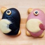 【東京のおいしいパン屋ルポ】ぱんやのパングワン 人気パンランキング|三軒茶屋