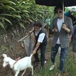 GACKT、故郷・沖縄でヤギ5頭を爆買い 玉城デニー知事と対談も