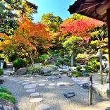 【関東近郊の紅葉】大自然をひとりじめ!群馬県の紅葉スポット4選