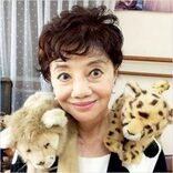 衝撃の「放送事故」を出演者がナマ激白<松島トモ子>ライオンとヒョウに連続で襲われた戦慄10日間
