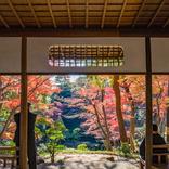 【関東近郊の紅葉】東京と思えない!大自然に囲まれた紅葉スポット6選