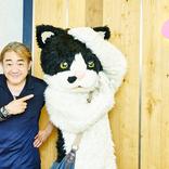 「野村義男のおなか(ま)いっぱい おかわりコラム」5杯目は猫界が誇るシンガーソングライターむぎ(猫)が登場
