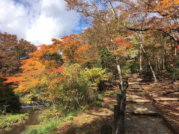 箱根ハイランドホテルの庭園散策路