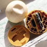 ウミガメの卵ドロボウを捕まえよう! GPS入りのフェイク・タマゴ