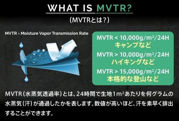 translation_img_MVTR