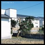 【Heatseekers Songs】オレンジスパイニクラブ「キンモクセイ」2週連続首位 『シブヤノオト』に出演したReolが5位に浮上