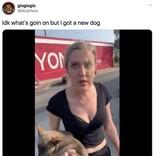 黒人男性に差別発言した白人女性、抱いていた子犬を投げつける(米)<動画あり>