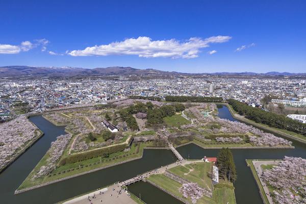 北海道函館・五稜郭タワーより五稜郭公園の桜