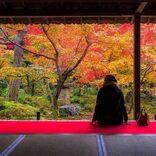 誰にも教えたくない!訪れるべき京都の絶景紅葉スポット特集