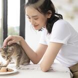 【ダイソー】ペット用品も充実!楽しく便利な「猫のお世話グッズ」5選