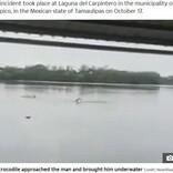遊泳禁止の湖で泳いでいた男性、ワニに頭を噛みつかれる(メキシコ)<動画あり>