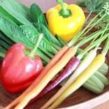 野菜嫌いな子どもに野菜を食べてもらうための3つの作戦