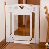親子に優しい工夫が盛りだくさん! 階段上にも使えるベビーゲート 『スマートゲイト プレミアム クリア』は透明窓で赤ちゃんが見えるから安心