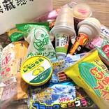 『全国のソウルアイス厳選セット』を取り寄せてみた!! 北海道から九州まで、16種のアイスが入っているぞ~!