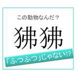 【動物漢字】「フツフツ」ではありません!「狒狒」は何と読む?