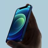【追加更新】最前線のクリエイターに聞く「iPhone12シリーズ、どれにしますか?」